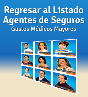 Banner-Agentes-GNP-Movil